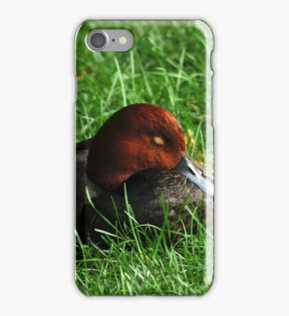 Sleeping Duck iPhone Case/Skin