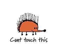 Funny orange hedgehog Photographic Print