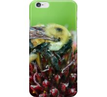 Too hot for a fur coat... iPhone Case/Skin