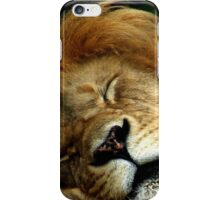 The Lion Sleeps iPhone Case/Skin