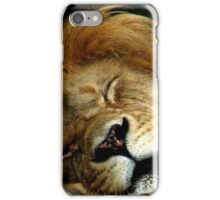 The Lion Sleeps iPhone Case/Skin