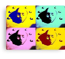 The Many Faces Of.... Canvas Print