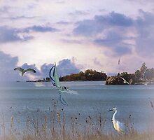 Branford Point by billfox256