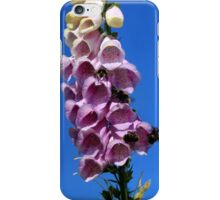 Popular with the bees iPhone Case/Skin