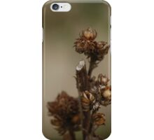 Dry Beauty iPhone Case/Skin