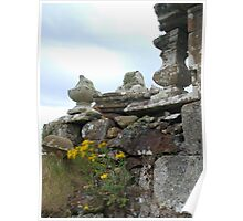 Ragwort on the Ruins Poster