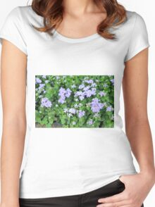 Purple flowers, natural background  Women's Fitted Scoop T-Shirt