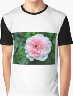 Pink rose macro on a texture on green leaves. Graphic T-Shirt
