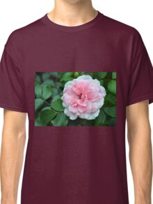 Pink rose macro on a texture on green leaves. Classic T-Shirt