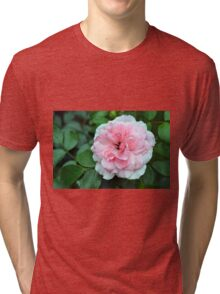 Pink rose macro on a texture on green leaves. Tri-blend T-Shirt