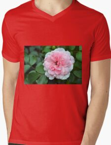 Pink rose macro on a texture on green leaves. Mens V-Neck T-Shirt