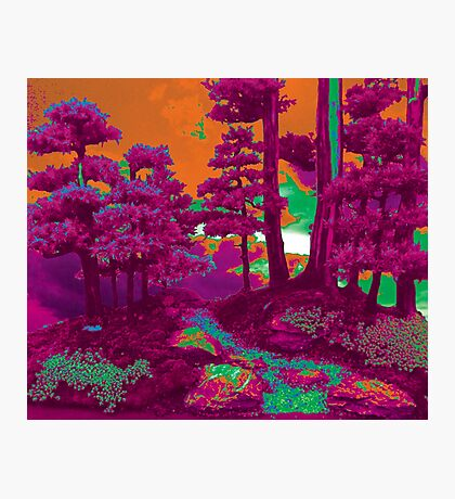 Larravide Forest Feel Warm  Photographic Print