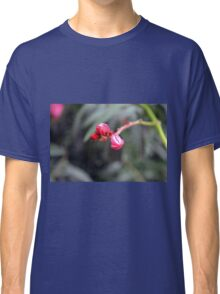 Small red flower bud, natural background. Classic T-Shirt