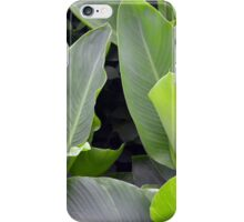 Green leaves natural background. iPhone Case/Skin