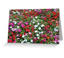 Colorful flowers pattern. Greeting Card