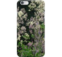 Come July iPhone Case/Skin