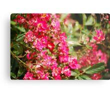 Bumble Bee Flowers Metal Print