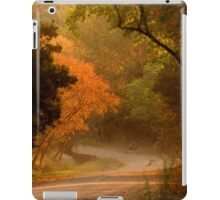 WHere Will This Road Take US ? iPad Case/Skin