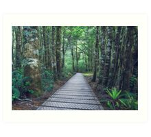 Haast Pass - New Zealand Art Print