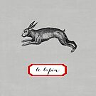 le lapin by beverlylefevre