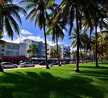 Miami Beach Ocean Drive by DDMITR