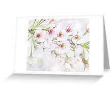 Cherry blossoms in the orchard Greeting Card