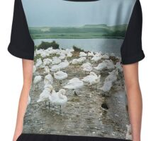The Swannery in Dorset Chiffon Top