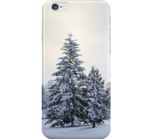 The Winter iPhone Case/Skin