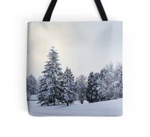 The Winter Tote Bag
