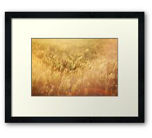 Warm touch Framed Print