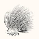The Porcupine by Oliver Lake