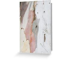 TREE, BARK, TEXTURE, color, Eco, Ecology, Nature, Natural World Greeting Card