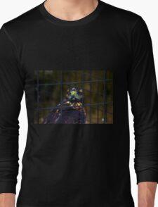 Pumapungo Raptor Long Sleeve T-Shirt