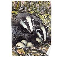 As rare as Badger eggs Poster