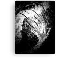 Monochrome Blaze Canvas Print
