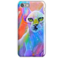 Colorful sphynx cat painting iPhone Case/Skin