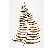 Palm Leaf – Sepia Photographic Print