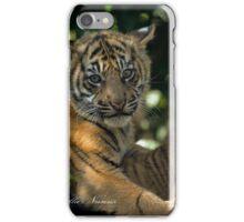 Tiger Cubs iPhone Case/Skin