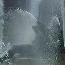 Summer Splash  by Jeff Stroud
