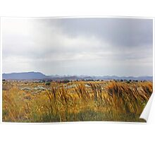 Golden Fields - Flinders Ranges Poster
