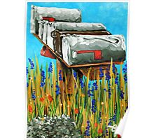 Rural Water Cooler Mail Mailbox Wildflowers Beautiful Country Poster