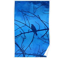 Bird Branches [Blue] Poster