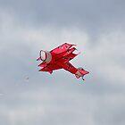 A little Fokker Dr.1 Triplane kite  by Declan Carr