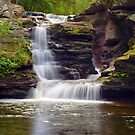 Gentle Summer Flow Over Murray Reynolds Falls by Gene Walls