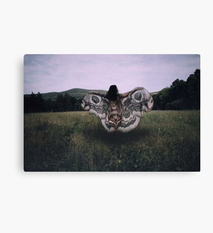 On the Breeze Canvas Print