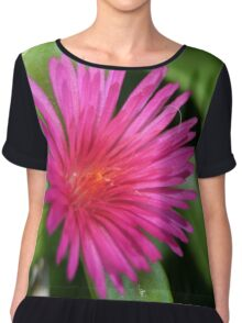 Pink Flower of Succulent Carpet Weed Women's Chiffon Top