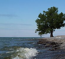 Ostrander Point (2) by Paraplu Photography