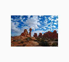 Balanced Rock, Arches National Park Unisex T-Shirt