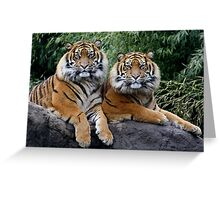 Twin brothers Greeting Card