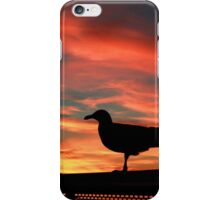 Seagull Silhouette Against a Beautiful Sunset iPhone Case/Skin
